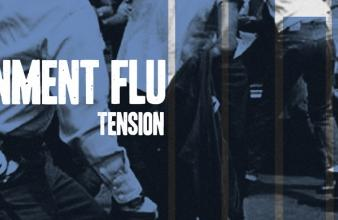 Government Flu